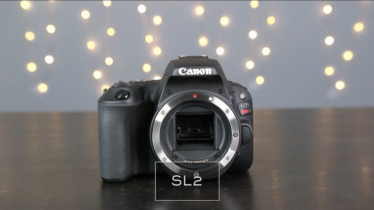 Camera Showdown: Canon M6 vs G7 X Mark II vs SL2